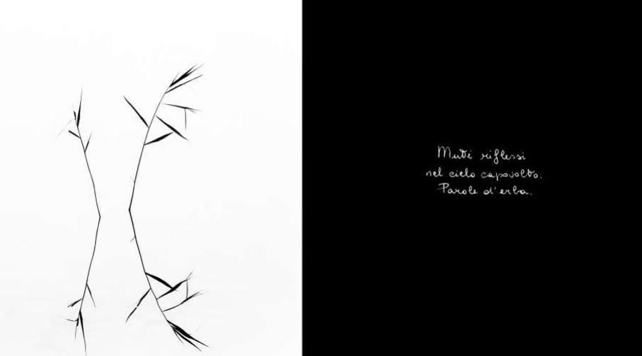 mostra fotografica calligrafie d'anima